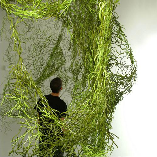 vitra-algue