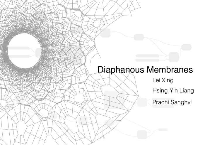 diaphanous-membranes_group-project-01